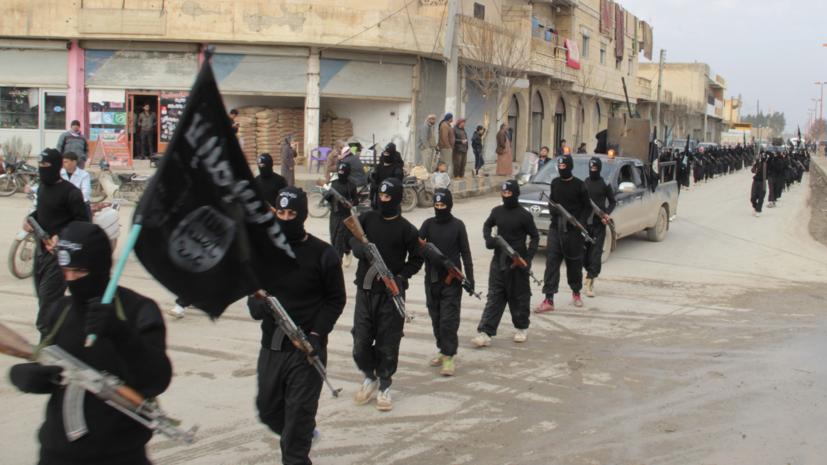 «Арабский барометр»:  как на самом деле мусульмане относятся к ИГ