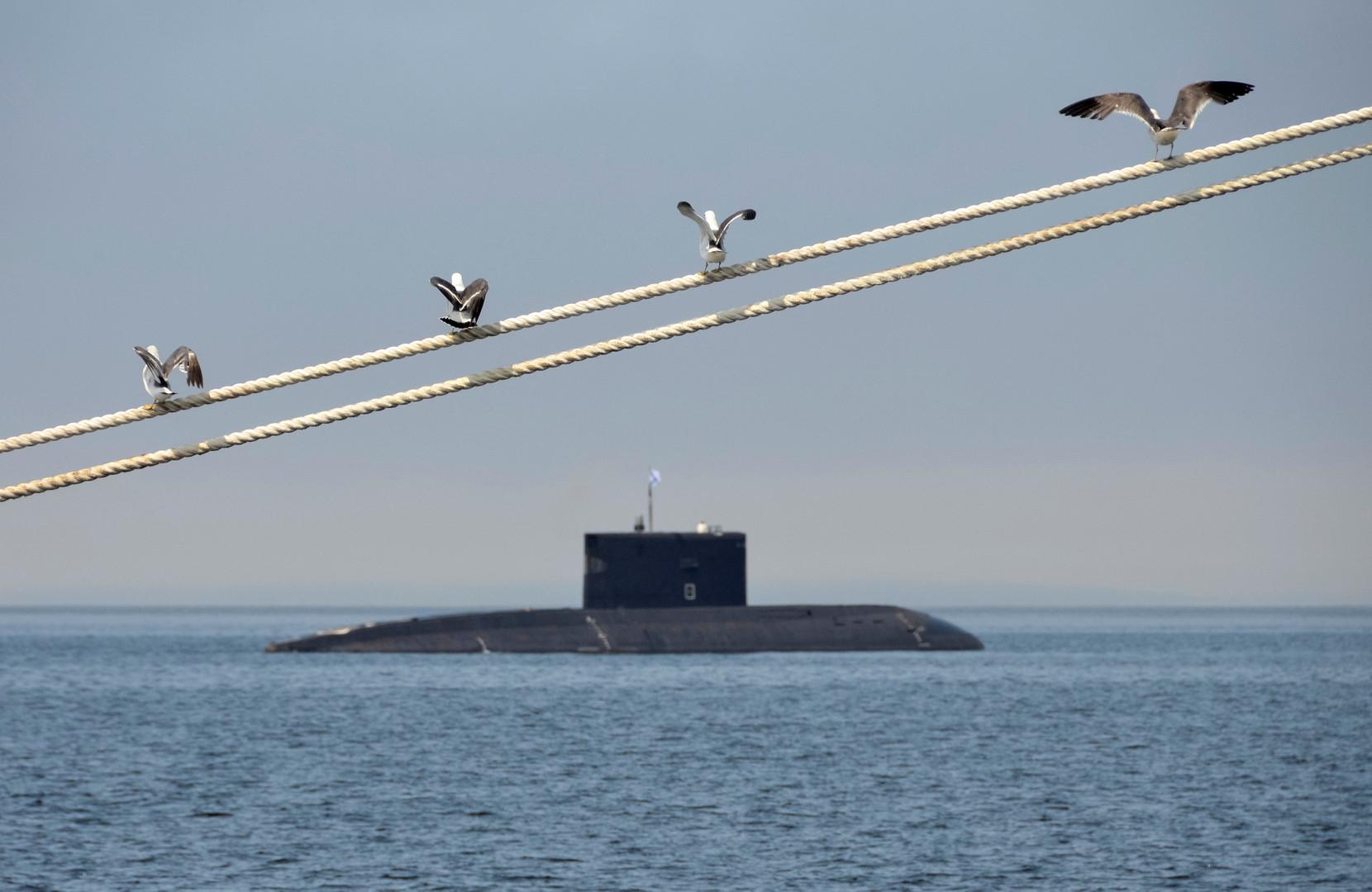 Чайки заняли места для просмотра репетиции парада ко Дню ВМФ РФ во Владивостоке.