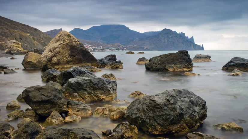 Учётом морских биоресурсов в России займутся подводные роботы
