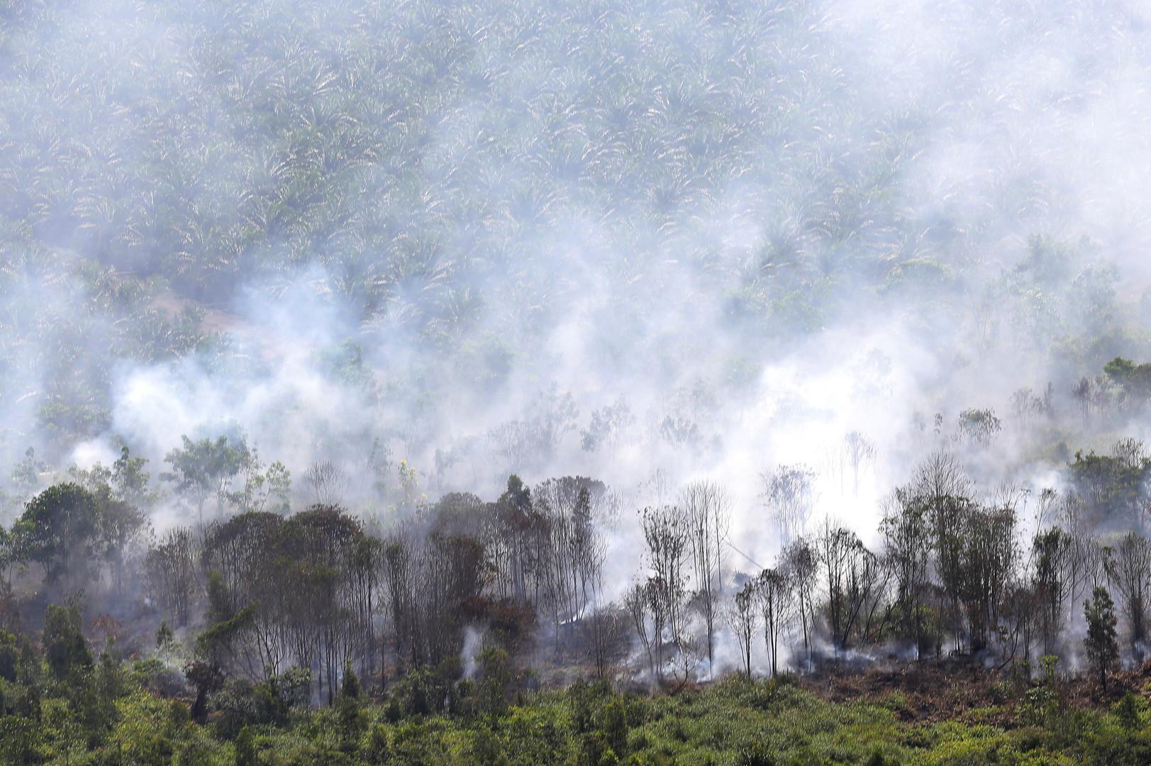 Вид на пожар, полыхающий в индонезийской провинции Южная Суматра
