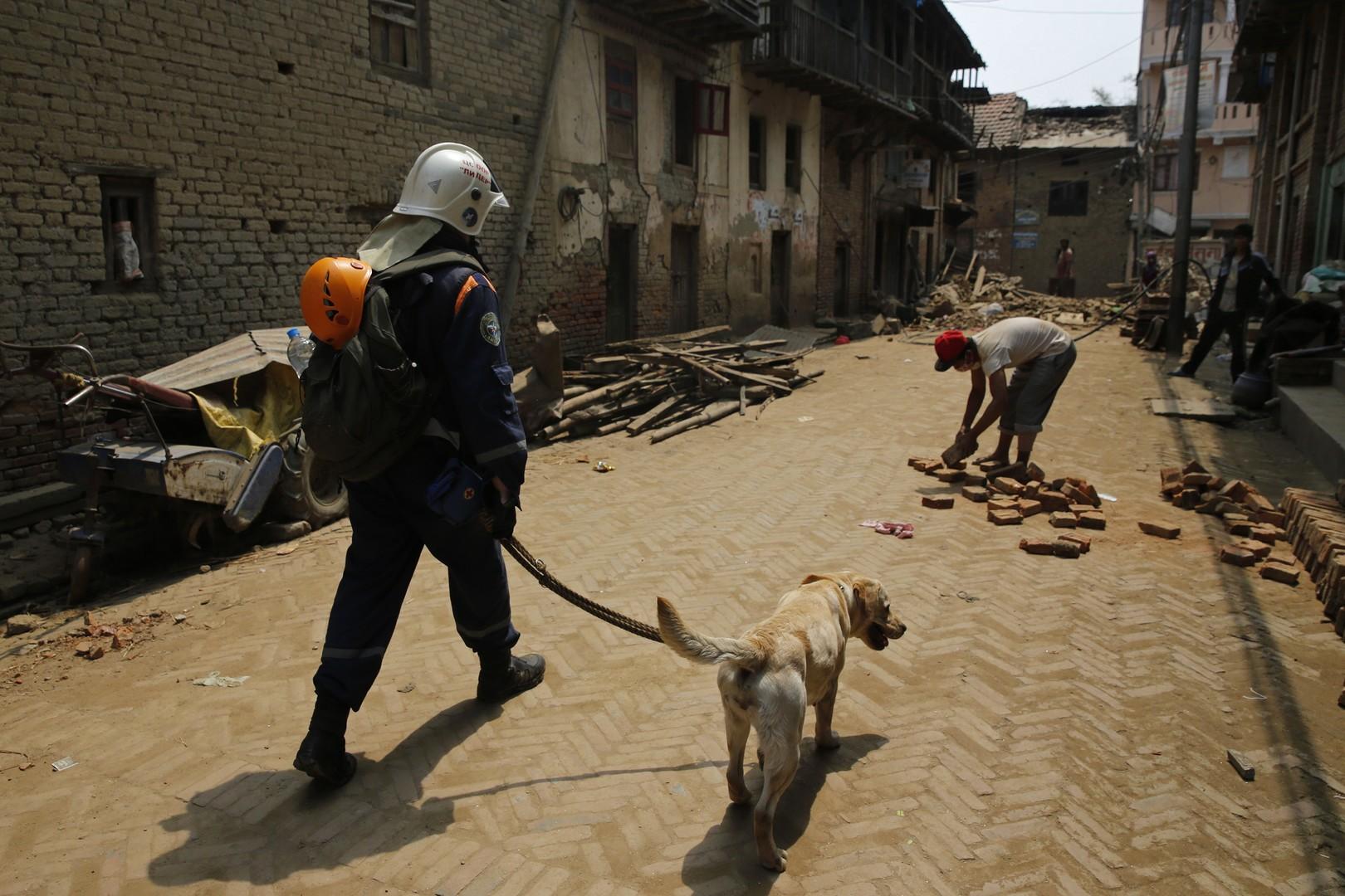 Спасатель Центра спасательных операций особого риска «Лидер» МЧС России с лабрадором по кличке Грейс, обученным искать людей под завалами зданий, во время поисково-спасательной операции в Непале.