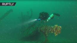 В Крыму проходит второй этап исследования затонувшего в XIX веке корабля «Веста»