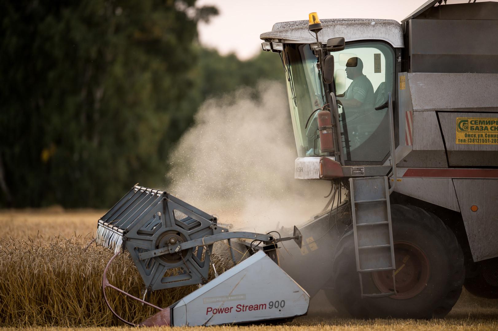 СМИ из-за рубежа восторгаются сельским хозяйством РФ