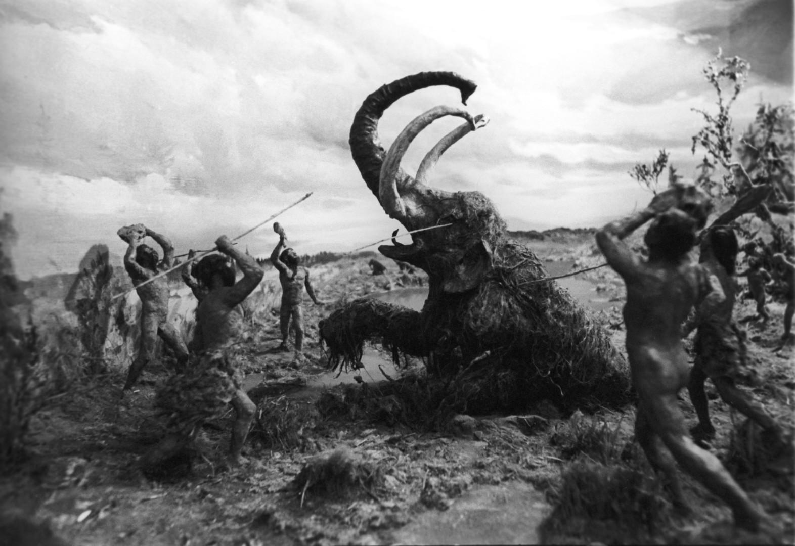 «Мы — захватчики»: почему люди выжили, а неандертальцы — нет