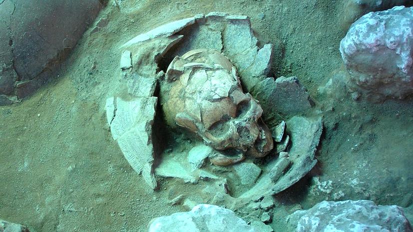 Генетики пишут историю: кто на самом деле первым заселил Океанию