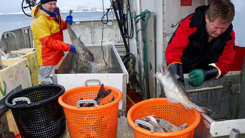 Норвежские рыбаки просят отменить антироссийские санкции