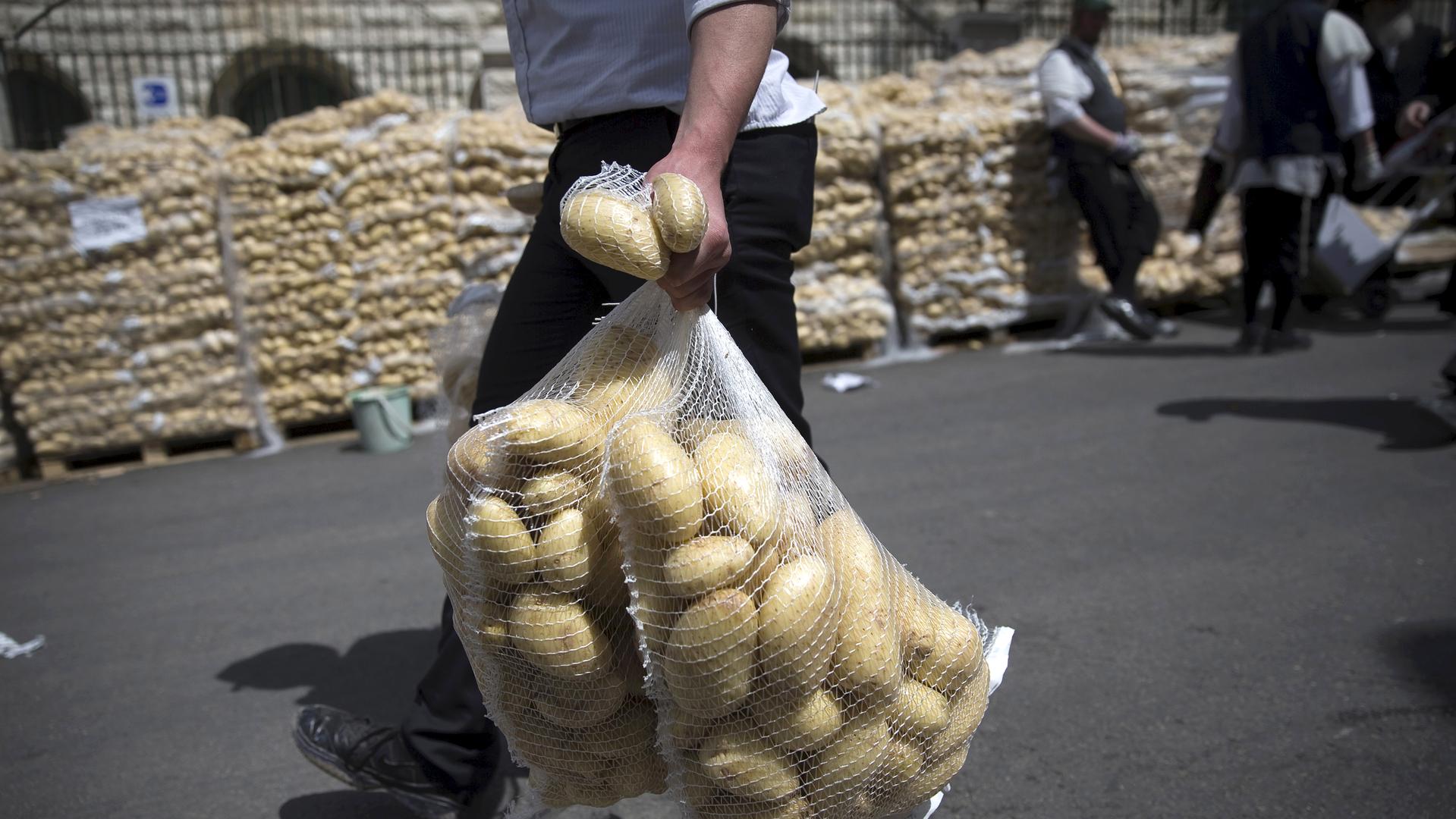 Россельхознадзор проверит качество египетского картофеля перед возобновлением поставок