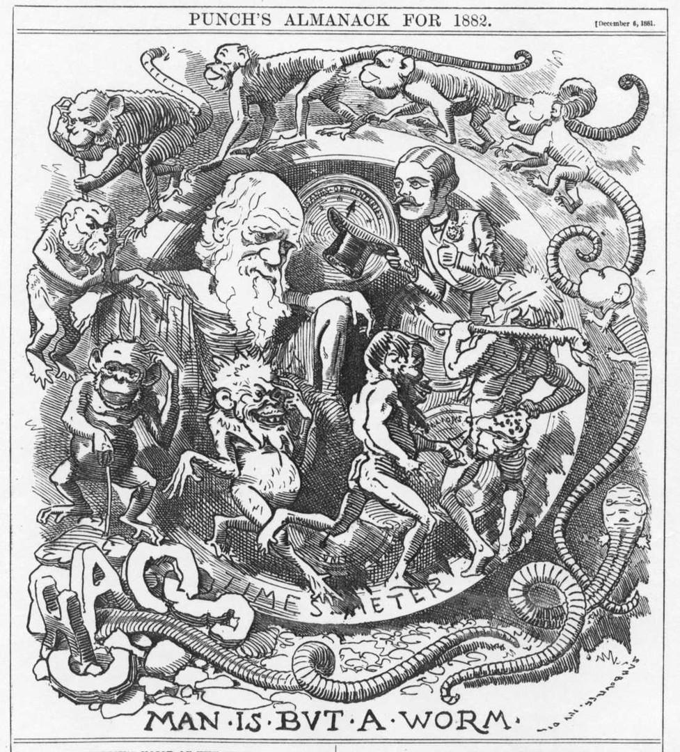Карикатура на тему теории Дарвина в альманахе Punch, 1882 год