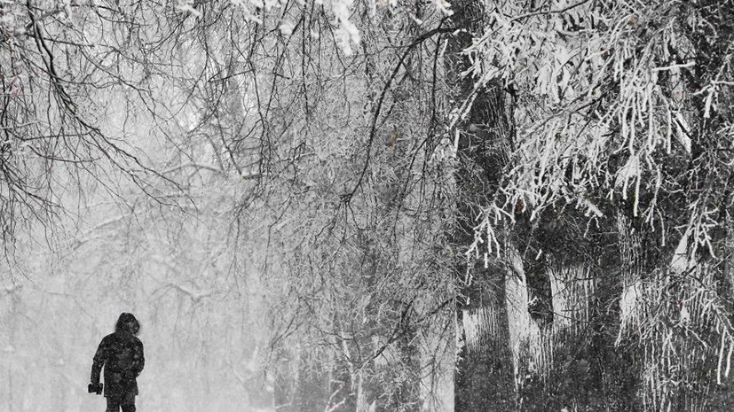 Москва меж снегом и водой: чего ещё ждать от аномальной осени