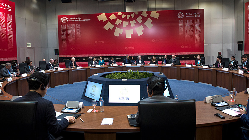 Свитер для Путина, «шпион» и кошачье трио: что сделало несерьёзными международные саммиты