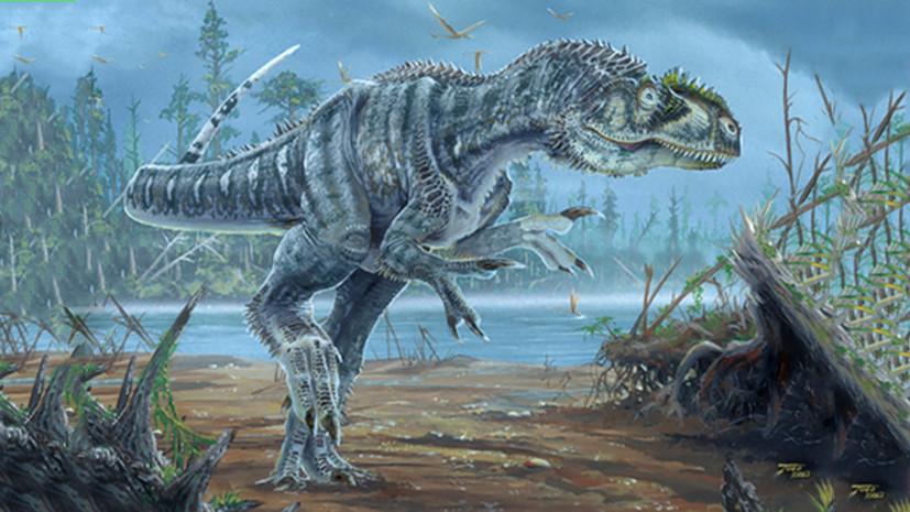 Динозавр с молотка: где продаются скелеты вымерших животных