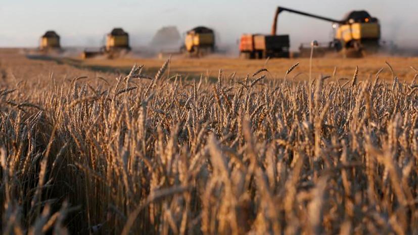 «Нужны фанатики и агитаторы»: в Госдуме предлагают вернуть колхозы