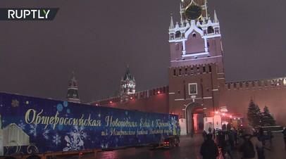 дед мороз привёз главную новогоднюю ёлку россии кремль