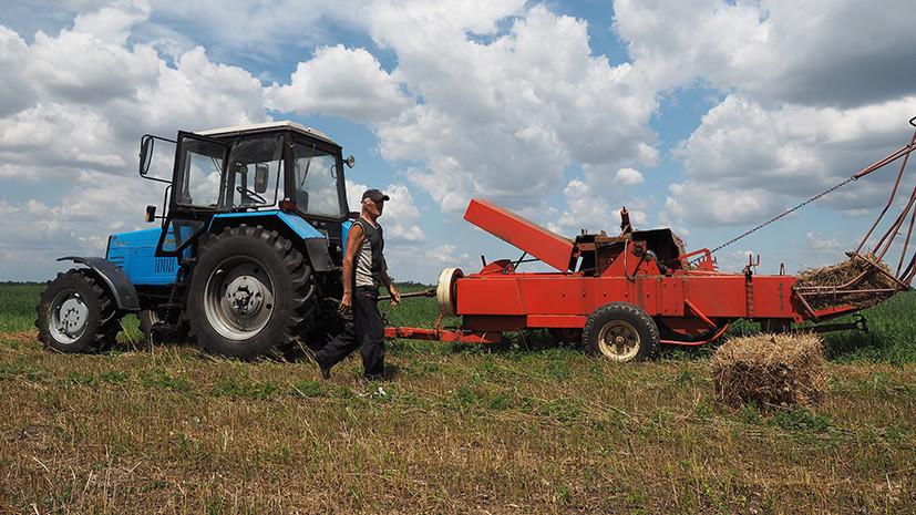 Сельские хозяйственники: кабмину предложат искать управляющих для фермерских кооперативов