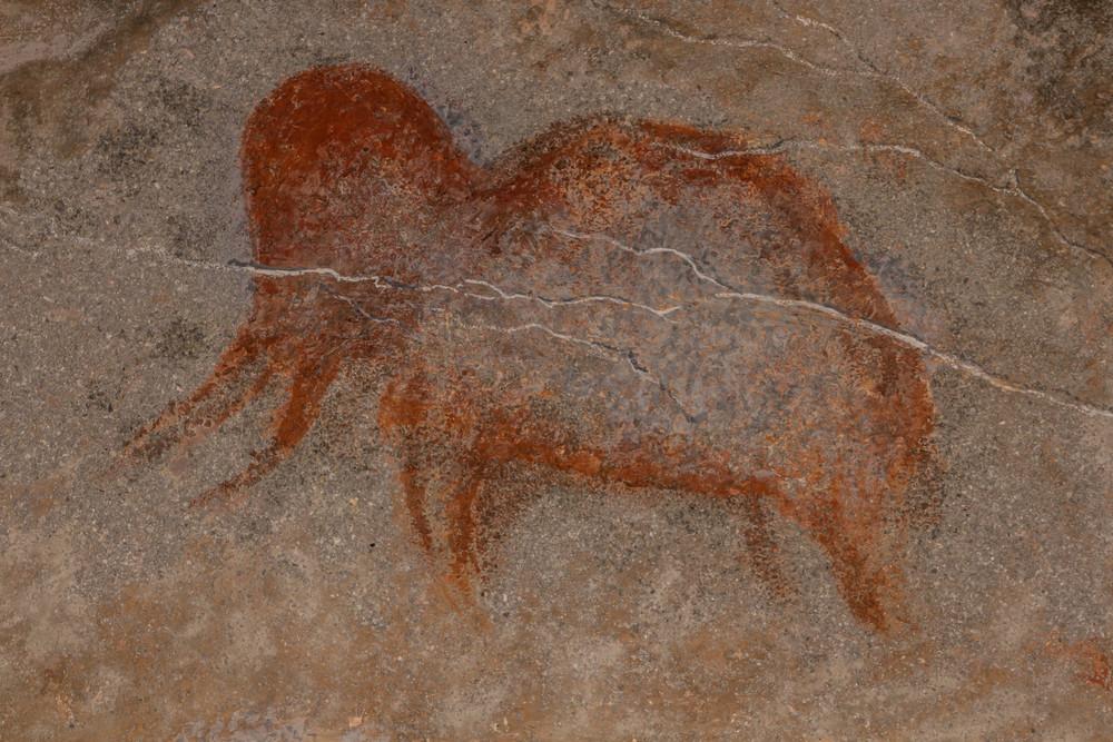 Тест RT: Что вы знаете о неандертальцах?