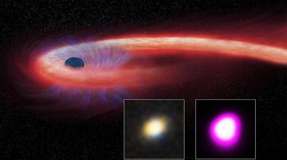 Гибель звезды у чёрной дыры XJ1500+0154 в представлении художника. В нижней части — фото происходящего:  в видимом спектре (слева), в рентгеновском диапазоне