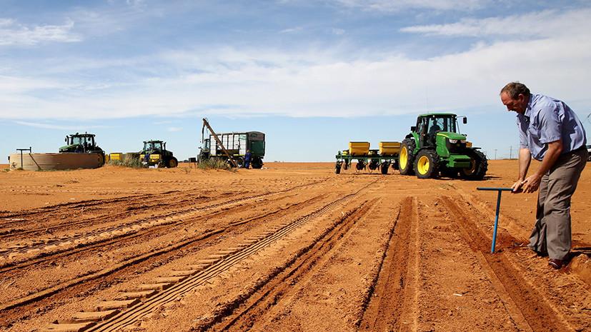 «Будет расовая война»: чем грозит предложение президента ЮАР отнять земли у белых фермеров