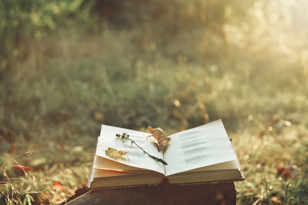 Тест RT ко Всемирному дню поэзии