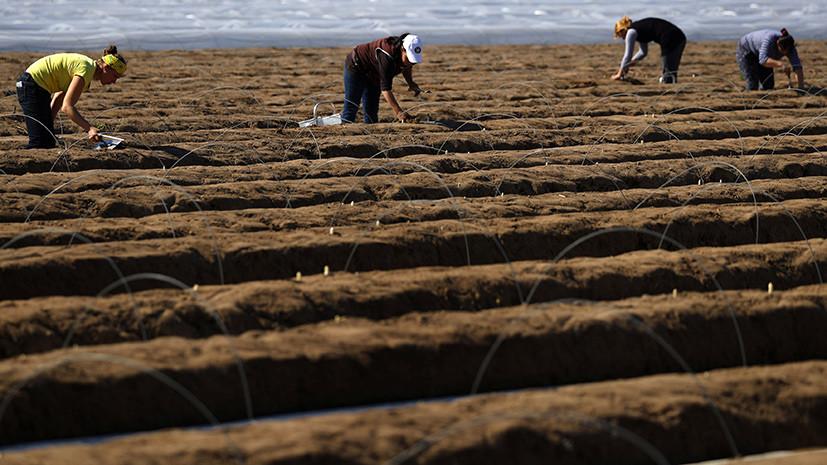 Неплодородная почва: общественники требуют от ЕС остановить монополизацию агрорынка