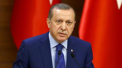 Ходите с оглядкой: Эрдоган призвал европейцев быть осторожными после демарша стран ЕС