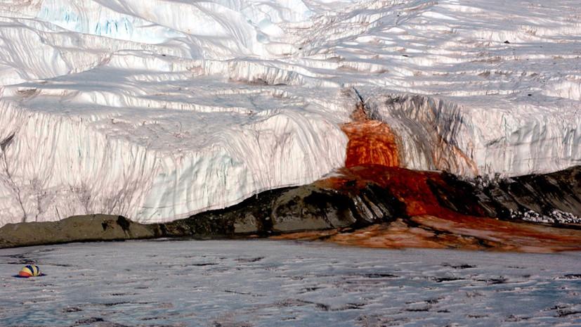 Кровавые водопады и живые камни: загадки, которые объяснила наука