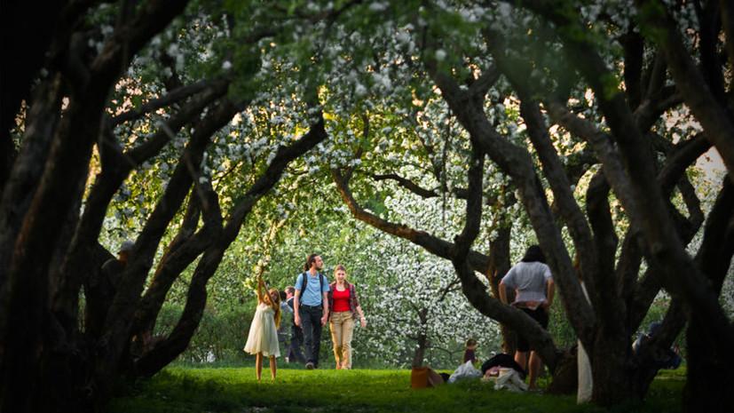 Пара дней лета: в Московском регионе в начале мая установится жаркая погода