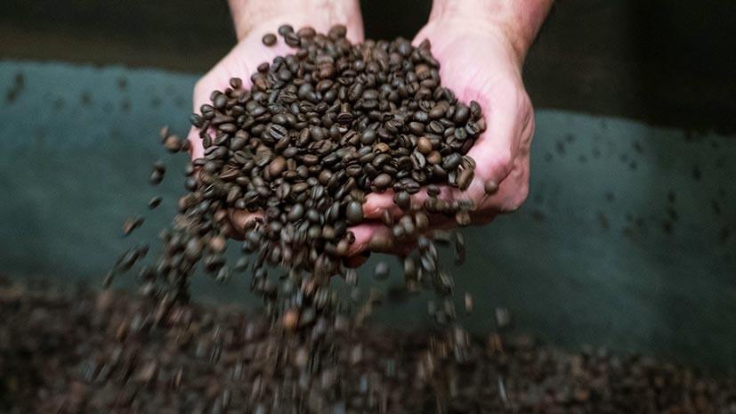 Кофе-брейк: цены на робусту и арабику понизились до показателей 2013 года