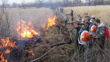 Аномальная жара и халатность: в Сибири вспыхнули мощные пожары