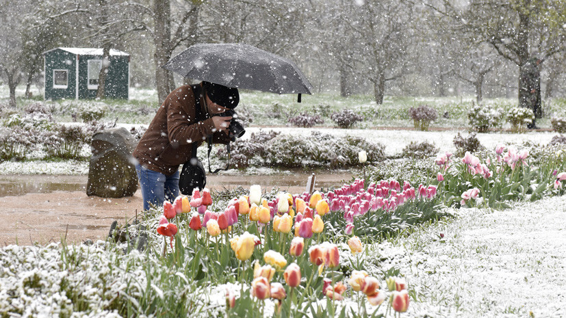8 и 9 мая в Москве ожидается снег, гололёд и шквалистый ветер