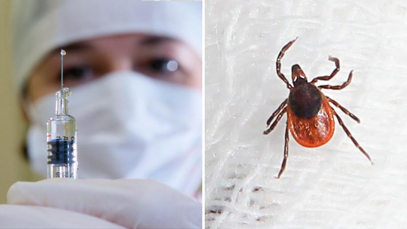 Около 1,5 тысячи укусов клещей зафиксировано вПодмосковье всамом начале сезона