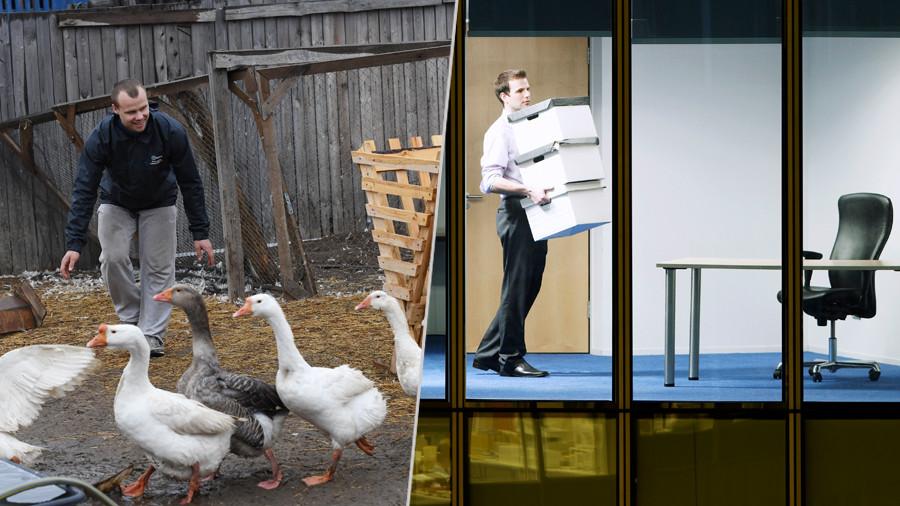 Между офисом и фермой: Минтруд назвал профессии с самой высокой и низкой зарплатой