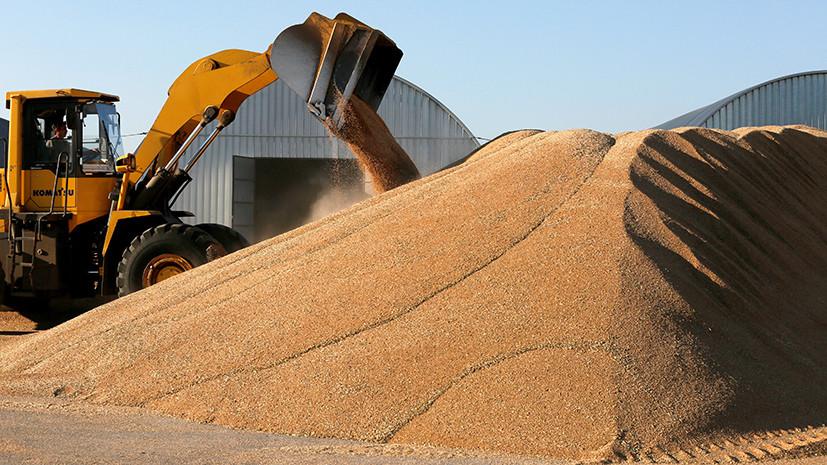 Подлили масла: Турция ввела новые ограничения на ввоз сельхозпродукции из России