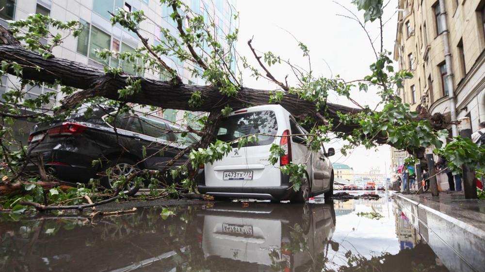 «Оранжевая» угроза: метеорологи не исключают повторения урагана в Москве