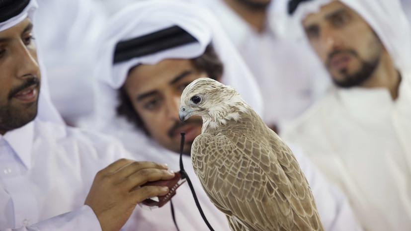 Куда приведёт поиск причин дипломатической блокады Дохи