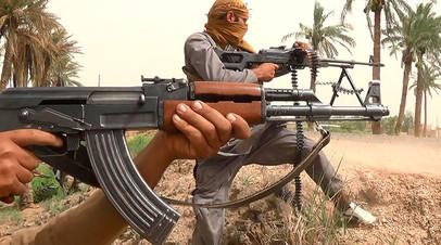 Джихадисты Карибского моря: как молодёжь из стран Латинской Америки оказывается в рядах ИГ