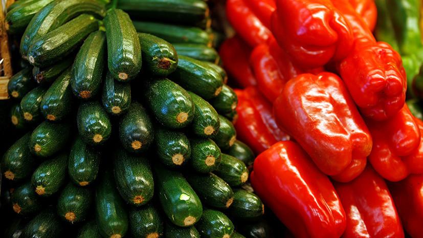 Осенняя жатва: c 1 сентября в Россию вернутся турецкие салаты, кабачки и тыквы
