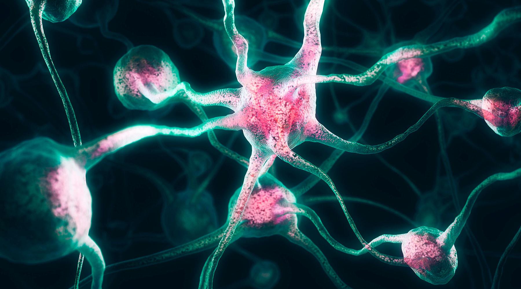 Ученые узнали, почему люди чувствуют чужую боль