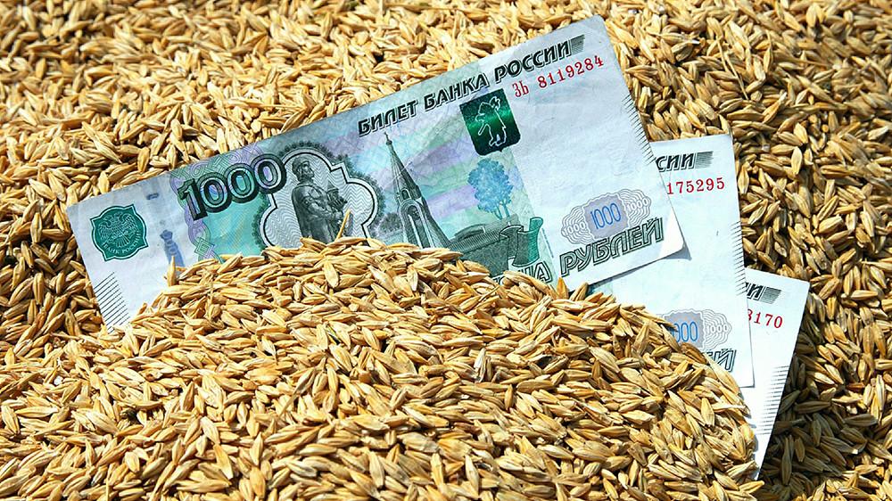 Здравое зерно: США прогнозируют лидерство России в мировом экспорте пшеницы