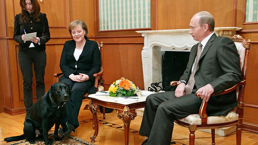 Непереводимая игра слов: как немецкое издание объяснило оскорбление в адрес Путина