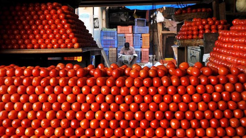 Минсельхоз предложил разрешить поставку томатов из Турции до 50 тысяч тонн
