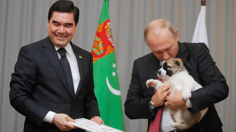 Президент Туркмении подарил Путину щенка алабая по кличке Верный