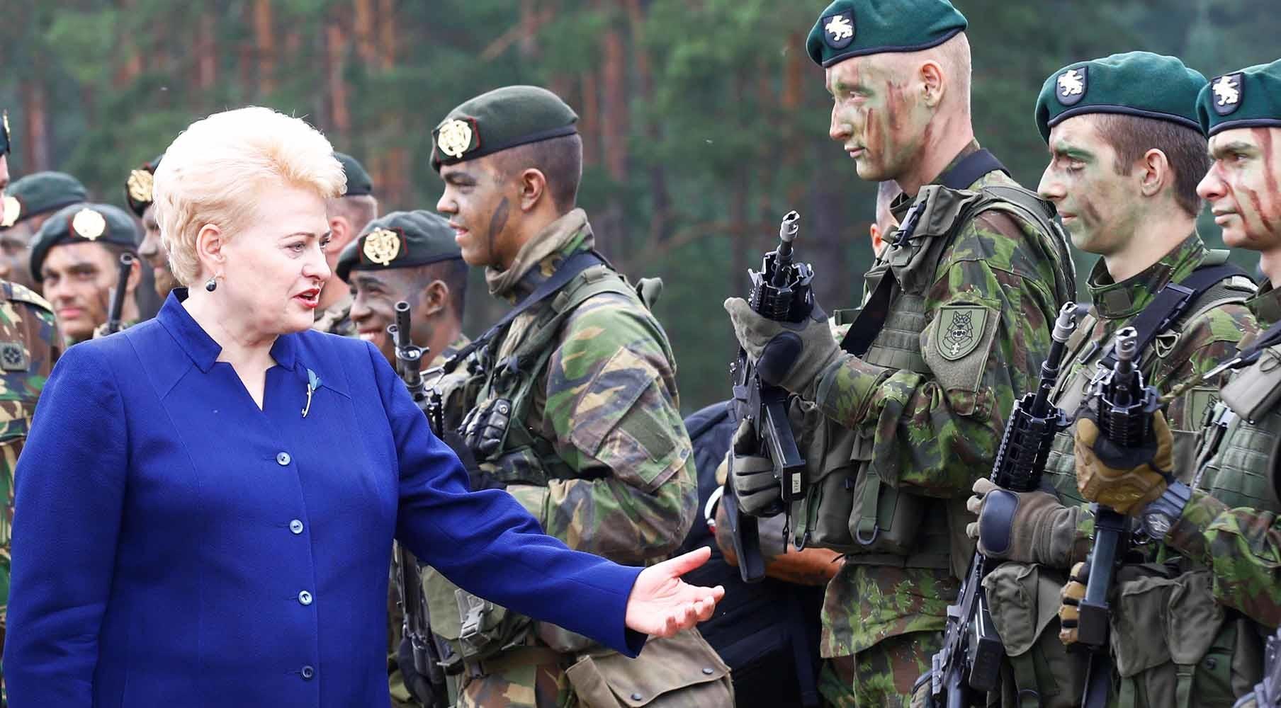 Ответ «Западу»: президент Литвы призвала ЕС обсудить создание военного «шенгена»