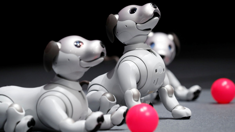 «Друг» человека: почему робот-собака Aibo возвращается на рынок
