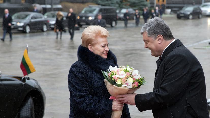 «План Маршалла» 2.0: как Литва планирует помогать Украине европейскими финансами