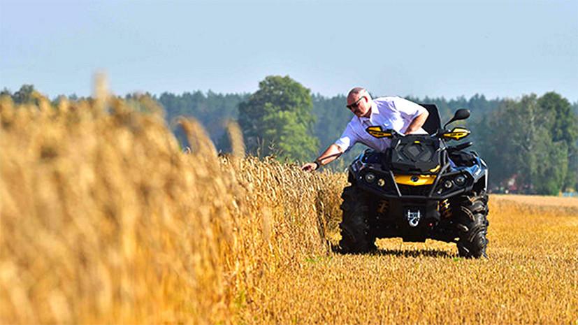 Белорусский парадокс: почему агросектор страны при высокой рентабельности несёт убытки