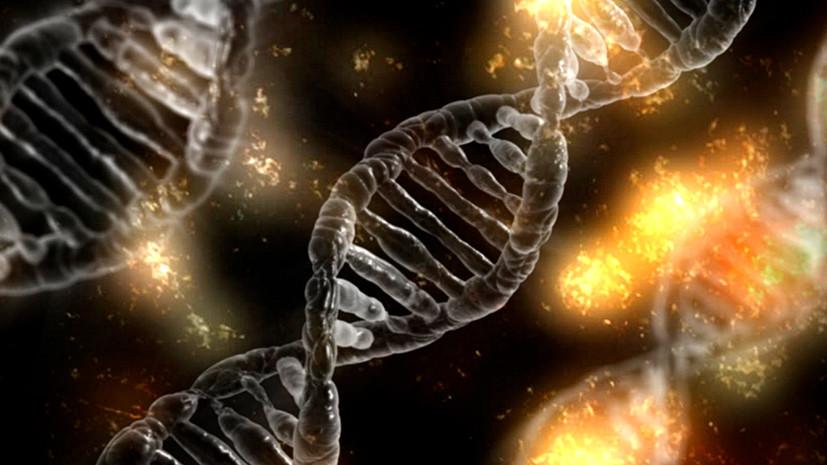 По живому: учёные впервые отредактировали геном в теле человека