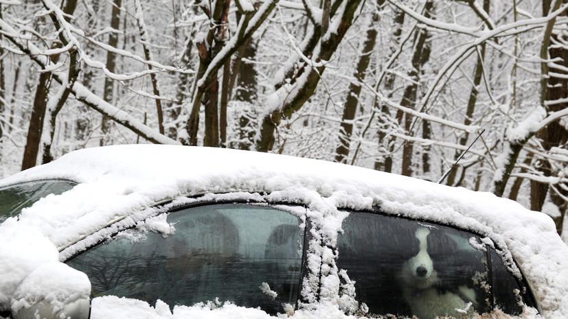 Эксперт поддержал идею об изменении требований ГИБДД к водителям