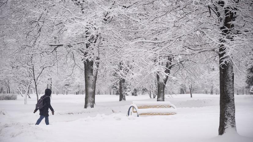 Синоптики рассказали, когда стоит ждать окончания снегопадов в Москве