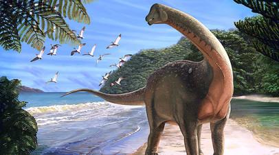 Художественное изображение Mansourasaurus shahinae