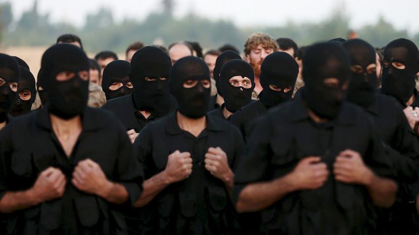 Глобальный фронт: возможно ли слияние ИГ и «Аль-Каиды» в единую группировку